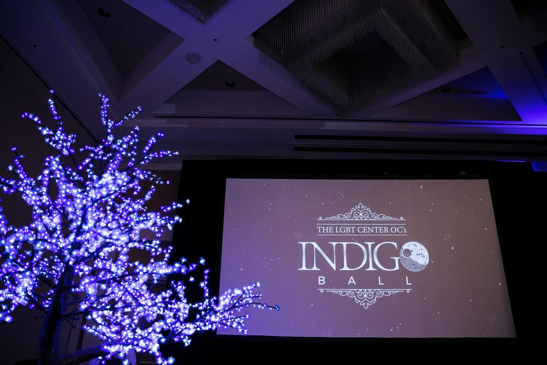 2019 Indigo Ball Gallery